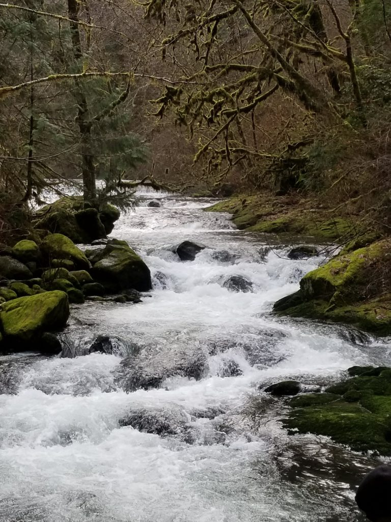 Sweet Creek, OR